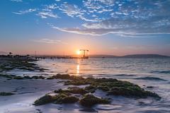 Sunset over Paracas beach! (karindebruin) Tags: peru paracas beach strand zand sand water sky sunset zonsondergang zuidamerika southamerica pier jetty steiger zeewier seaweed