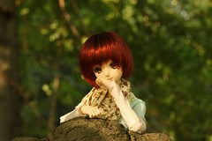 Shy (MarloesK) Tags: autumn dollfie dream sister mmd ddh10 custom momo outside