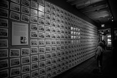 Animating Steamboat Willie (KC Mike D.) Tags: wall cartoon cell frame animated disney walt waltdisney museum waltdisneyfamilymuseum sanfrancisco norcal presidio ubiwerks cartoonist