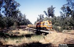 2618 XB1017 Abba River Wonnerup 16 December 1981 (RailWA) Tags: railwa philmelling westrail 1981 xb107 abba river wonnerup