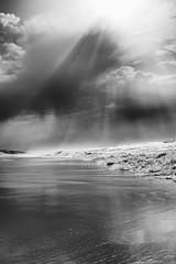 Ocean (2) (Pluie du matin) Tags: nb monochrome bw hourtin gironde france