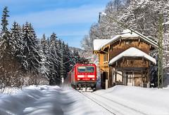 Winter im Höllental ((Mathias Dersch)) Tags: höllentalbahn schwarzwald schnee br143 rb dbregiosüdbaden db dbregio höllsteig freiburg seebrugg schluchsee tiitisee sonne 143055 winter höllental bahnhof doppelstockwagen