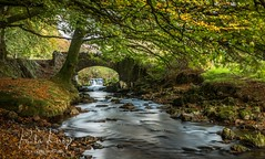 Robbers Bridge (PKpics1) Tags: water river bridge robbersbridge rocks riverbed leaves autumn trees stone landscape