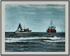 Morten Bay fishing vessels. (agphoto100) Tags: f770exr fuji fujifilm water sea boats trawler waves birds seagull orb hdr luminal brisbane queensland agphoto100