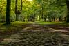 urkiola (aingerubidaurreta) Tags: autumn naturalpark urkiola euskalherria euskadi europe beautiful basquecountry bizkaia rocks relax trees green grass viacrucis paysbasque paisaje paradise