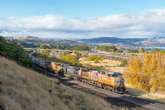 Gold Rush (sullivan1985) Tags: unionpacific up columbiariver or oregon pnw sp southernpacific ge generalelectric eastbound freight freighttrain grain autumn peak foliage golden gold flag speedlettering thedalles vista ac4400cw es44ac up5649 up6243 up5435