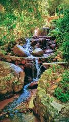 Kalumpang Resort & Training Centre - Kalumpang - http://4sq.com/gksvwq #traveling #holidays #waterfall #holidayMalaysia #travelMalaysia #Asia #Malaysia #Selangor #旅行 #度假 #马来西亚旅行 #马来西亚度假 #亚洲 #马来西亚 #雪兰莪 #发现大马 #发现马来西亚 #自游马来西亚 #green #绿色 #resort #度假村