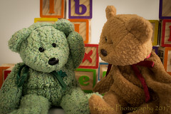 Can You Itch My Ear (HTBT) (13skies) Tags: buildingblocks itch scratch helping helpingout friends needs buddies asking pitchingin htbt bears greenbear brownbear silly teddybeartuesday tuesday fun looking playful affection love meaning happyteddybeartuesday sony 13skies