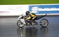 Straightliners_7435 (Fast an' Bulbous) Tags: bike biker moto motorcycle drag strip race track fast speed power acceleration motorsport santapod dragbike nikon
