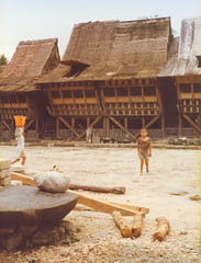 Nias, traditional house, 1980 (Elios Amati) Tags: indonesia eliosamati nias sumatra traditionalhouse