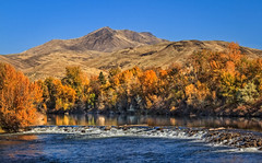 Autumn On The River (http://fineartamerica.com/profiles/robert-bales.ht) Tags: fall gemcounty haybales idaho people photo places riverorstreams scenic states mountain emmett sweet squawbutte treasurevalley emmettvalley trees thebutte beautiful awesome magnificent peaceful wow town butte gem river payetteriver southwesternidaho reflections water scenicbiway blue whitewater picturesque mountains payette riverphotography tributary robertbales snakeriver fallcolor autumn autumncolor