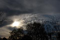 Ciel nuageux en automne_0266 (Luc Barré) Tags: ciel sky nuage nuages shadow shadows blue evening soit automne autumn landes estampon losse