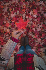 I come alive in the fall time 🍁🎶 (Sonika Arora 604) Tags: vancouver vancity fall fallinvancouver colors colours nature naturallight natural nikon nikonphotography nikonphotographer nikonphotographers nikond800 explorebc explorecanada explorevancouver canada beautifulbc beautiful britishcolumbia bc leaf leaves colourful red person girl woman plaid shoes hand hands