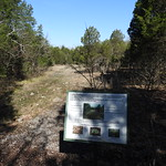 Cedar Glade and Sign thumbnail