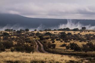 mist off the hidden river