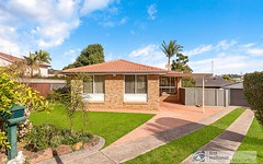 3 Hall Place, Minto NSW
