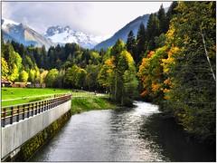 Oberstdorfer Trettach (almresi1) Tags: flus river water wasser oberstdorf fall herbst autumn wood wald forest bunt berge mountains schnee snow geländer kühe cows weide allgäu oberallgäu trettach alpen alps bavaria hdr trees