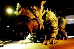 Drachenhöhle - Dragon Cave (vampire-carmen) Tags: drache dragon höhle cave roboter robot furtherdrachenstich furthimwald cham oberpfalz bayern bavaria deutschland germany alemania draak dragua ድራጎን balaur تنين թեվավորմողես əjdəha dragoi ঘুড়িবিশেষ နဂါး zmaj дракон chinjoka 龍 龙 dragen drako draakon lohikäärme δράκων ડ્રેગન moʻonui דרקון अजगर zaj naga dreki ドラゴン דראַקאָן ಡ್ರ್ಯಾಗನ್ айдаһар ажыдаар 용 ejder draconis pūķis drakonas draach ड्रागन луу ښامار smok dragão tirakoni dragón conrồng ഡ്രാഗൺ มังกร டிராகன் డ్రాగన్ tarakona ड्रॅगन змеј اژدها ਅਜਗਰ zibukanana بلائن මකරා masduulaagii joka