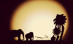 Jungle party (Onlyshilpi) Tags: shadow moment blackandwhite animal toystory flickrfriday timing ybs2017
