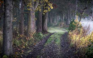 early autumn hike