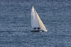 (Rick 2025) Tags: sailing breakaway