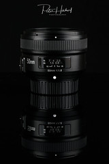 """Yongnuo YN 50mm/1.8 for Nikon • <a style=""""font-size:0.8em;"""" href=""""http://www.flickr.com/photos/58574596@N06/26316584349/"""" target=""""_blank"""">View on Flickr</a>"""