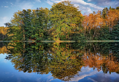 Mirror, mirror ..., Norway (Vest der ute) Tags: xt2 norway rogaland haugesund djupadalen water waterscape landscape lake trees clouds sky grass reflections mirror fall fav25 fav200
