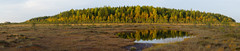 Sunset light - Autumn colours (talaakso) Tags: attributioncreativecommons auringonlasku creativecommons finland finnishbog heijastus herbst lampi solnedgång sunset tammela terolaakso torronsuo torronsuonationalpark torronsuonkansallispuisto waterreflection autumn autumnautumncolours bog fall fallcolors finnishforest höst höstfärger kansallispuisto kärr lightandshadow maisemakuva mire myr myrmark naturelandscape naturepanorama panoraama panorama peatland pond reflection ruska suo syksy talaakso valojavarjo tavastiaproper fi