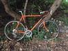 Bilenky Signature Tourlite in seasonal colors #bilenkycycleworks #bilenkytourlite #bilaminate (Bilenky Cycle Works) Tags: bilenkycycleworks bilenkytourlite bilaminate