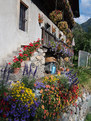 Lots of flowers (David Thyberg) Tags: france 2017 building chamonix alpes leshouches