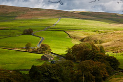 lonely road (scottprice16) Tags: england yorkshire yorkshiredales road narrow tarmac winding uphill bleak light shade sun october autumn farm barn trees canon canoneos6d 24105mmf4l yorkshiredalesnationalpark stainforth malham hensidelane