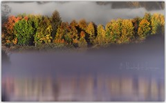 Fall fog (PhotoArt Images) Tags: usa photoartimages oxbowbend wyoming fall reflections autumn jacksonhole water color