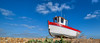 Rebecca, Dungeness (Aliy) Tags: rebecca dungeness boat fishingboat kent beach littleboat pebbles pebbleridge low lowangle