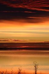 Early morning (vegeta25) Tags: early morning sunday autumn ősz reggel kora korai balaton lake keszthely tó tópart part sky felhők clouds cloudy cloud ég égbolt nature mothernatureatherbest mothernature
