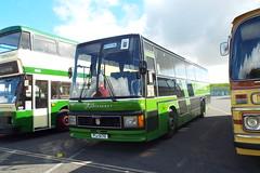 206-03 (Ian R. Simpson) Tags: pij5170 b206afv leyland tiger duple caribbean robinsons coach 206 preserved showbus2017