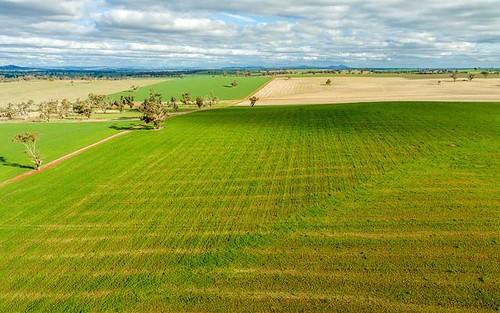 The Village, East Millwood Road, Wagga Wagga NSW