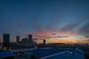 Johannesburg From M2 Highway (In Explore 12-10-17) (360°jetweb) Tags: bedfordview johannesburg sunset sunrise hiillbrow panoramic panorama orange blue tower south africa city skyline sky dusk tree 360°