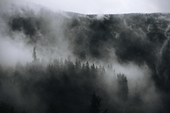 a terrible dream (Yuliya Bahr) Tags: landscape mountains forest fog clouds sky tirol austria italy nature dark morning mystic black grain