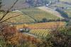 Go ye also into the vineyard (No_Mosquito) Tags: kahlenberg vienna austria hills autumn fall vineyard canon powershot g7xmarkii view