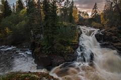 Norwegian nature (steffos1986) Tags: nature landscape norway river waterfall creek gorge cascade rapids sunset sigma1020 forest tree norwegian norwegen noruega longexposure wideangel nikond5500 explore hike