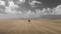 Dunes du Touquet à l'aube-2.jpg