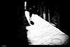 DSCF3059 (anto-logic) Tags: donna passi passeggio passeggiata lucca persone sole ombre luce luminoso chiaro bello caldo woman walk walking promenade strada strret people free freedom sun shadows fence light clear daily nice warm beautiful lovely pretty colors colorful love outdoor streetshots inquadratura wonderful fabulous magnificent superb hot naturallight skin lighting framing crop charming puntodivista profonditàdicampo pov dof bokeh focus pointofview depthoffield postproduzione postproduction lightroom filtro filter effetti effects photoshop alienskin eos canon