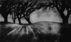 A Communion of Trees...with Texture (Rick Exstrom) Tags: rickexstrom trees texture landscape blackandwhite monochrome mysterious