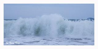SHF_8609_Wave