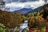 Tummel Autumn (jmachoo) Tags: autumn cplour landscape foss perthshire scotland forest tourism scenic river