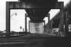 monument. (jonathancastellino) Tags: toronto infrastructure gardiner expressway highway concrete distance column bridge leica q road empty tunnel gardinerexpressway monument modernist modernism architecture
