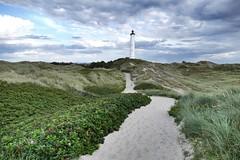 Lyngvig Fyr, Nørre Lyngvig, Midtjylland, Denmark (sven188) Tags: beach nature natur green grass jütland midtjylland jylland ocean sand sanddunes dunes white danish denmark lighthouse fyr nørrelyngvigfyr