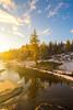 DSC08153-HDR (www.mikereidphotography.com) Tags: larches fallcolors autumn canada canadianrockies lakemoraine larchvalley sentinelpass 85mm otus zeiss mirrorless a7r2 landscape golden