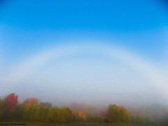 Fogbow (rachael242) Tags: fogbow bow fog white rainbow cloud ghost atmospheric weather water drops droplets clouds sky observe trees nature rare phenomenon landscape nikon canada valley hill wood forest park climate