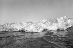 wave  #989 (lynnb's snaps) Tags: 2015 35mm freshwater bw beach film nature ocean rangefinder waves ilfordhp5 kodakxtoldeveloper sydney australia coast blackandwhite bianconegro bianconero blackwhite biancoenero blancoynegro noiretblanc schwarzweis olumpusxa